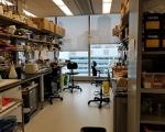 Lab_2017